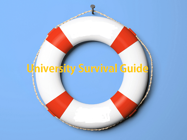 University Survival Guide