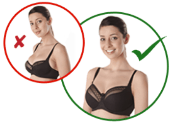 How to Select the Right Bra Size